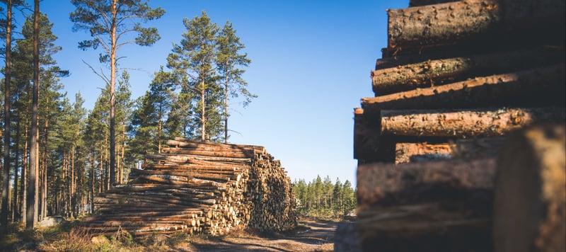 Logs-Finland_2017